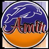 Amir-Logo-04