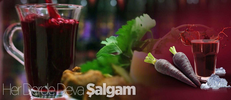 Salgam-002